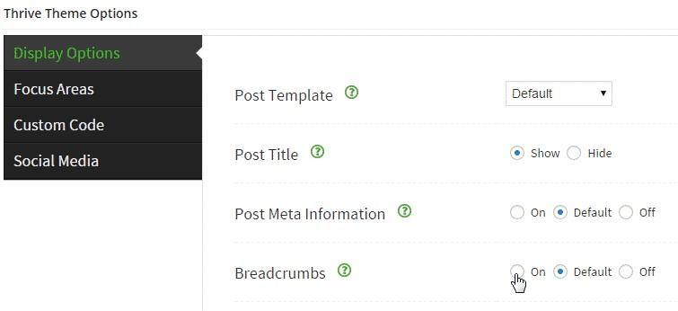 Thrive Theme WordPress 03