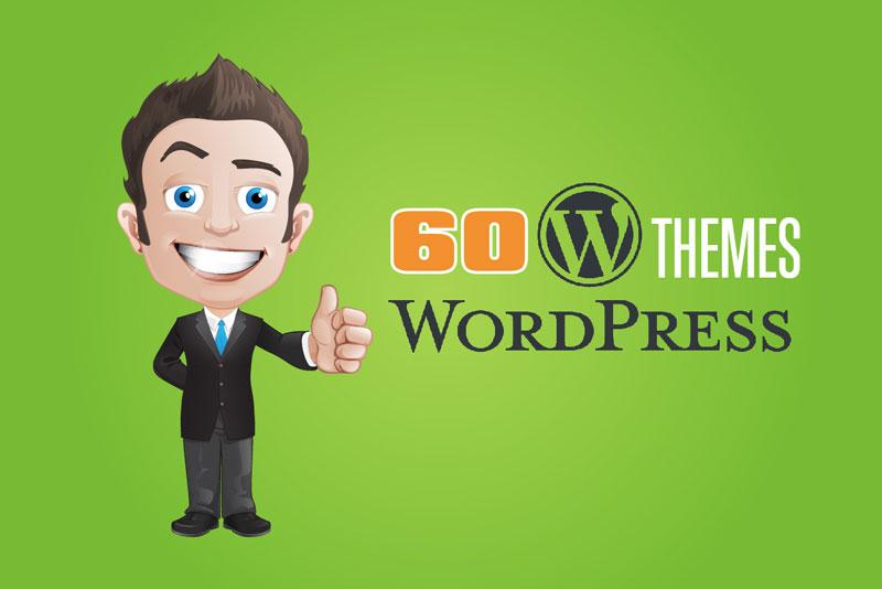 WordPress-theme-post-img-60opt